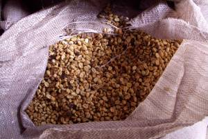 Kaffee-Manufaktur Lehle Kaffebohnen Rohbohnen
