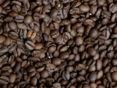 Kaffebohnen Lehle Kaffee